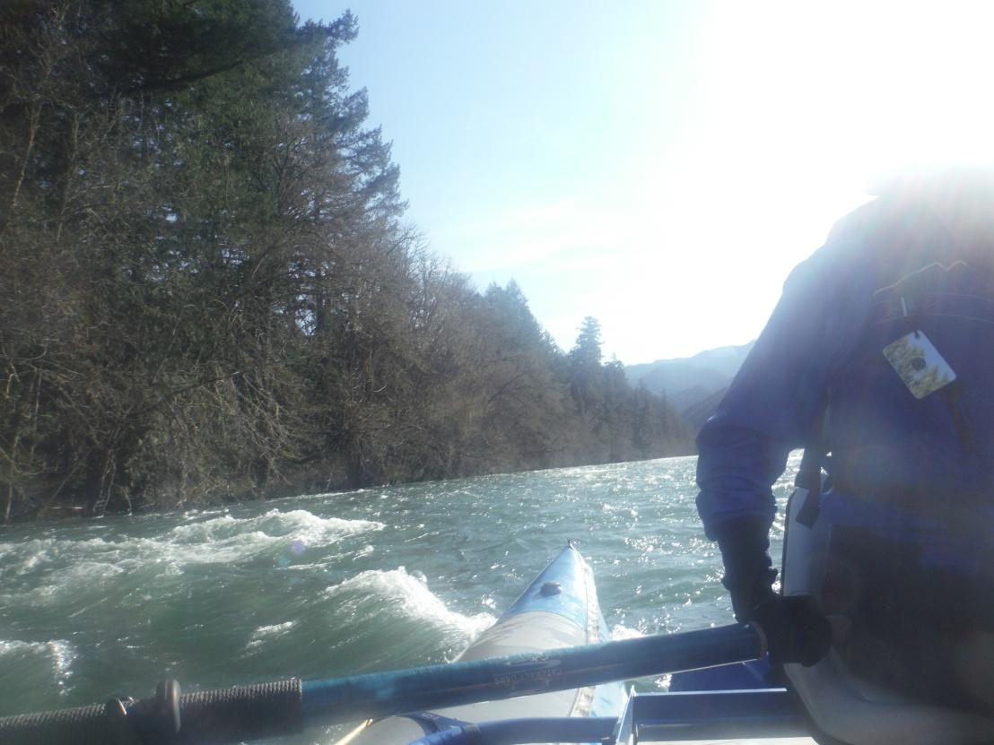 McKenzie River in the SpringTime